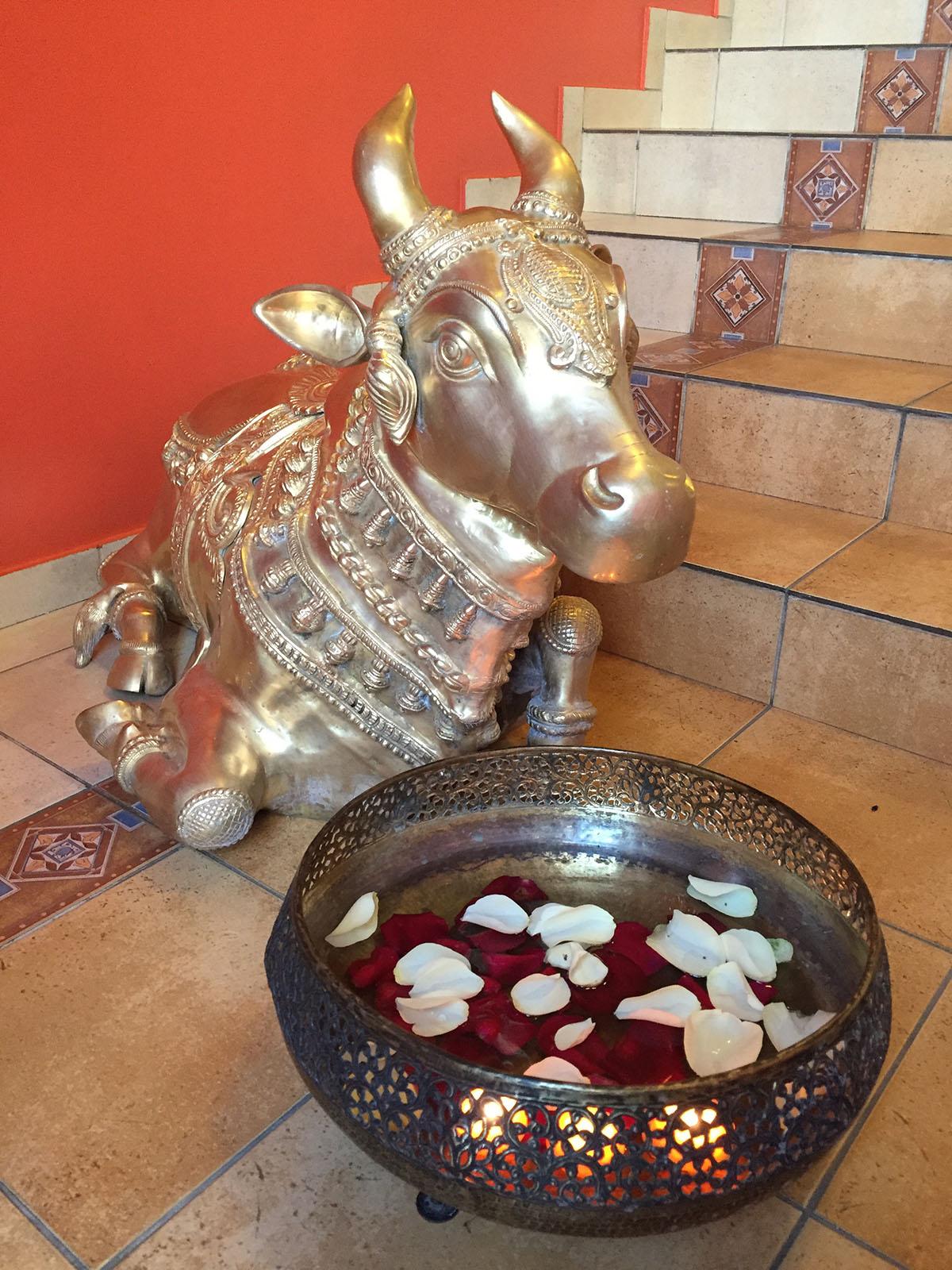 Корова почитается в индуизме как священное животное, олицетворяющее изобилие и чистоту.