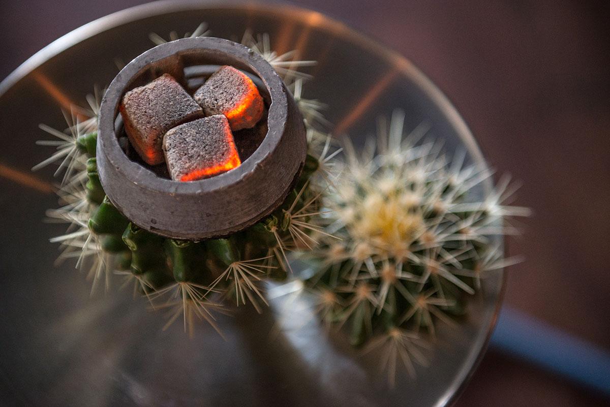 За 920 гривен кальянщик срезает верхушку кактуса и укладывает табак в чашу.